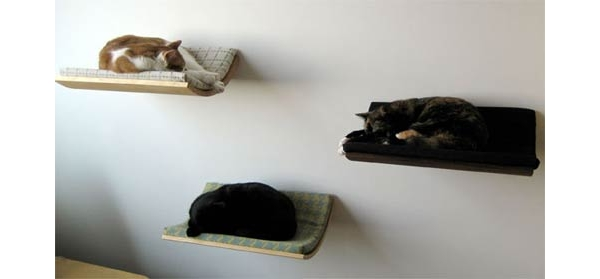 Cama de gato blog m veis planejados artezanal - Cama para gato ...